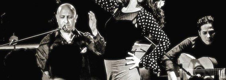 Vorschau auf Samstag, den 22. Februar, 20 Uhr mit dem Trio Flamenco