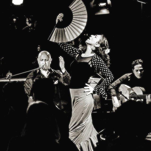 "Am Samstag, 22. Februar 2020 um 20.00 Uhr ""Suzann Bustani mit dem Trio Flamenco"""